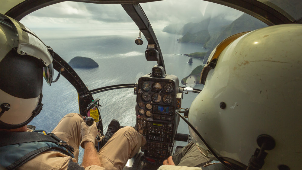 The most pristine Hawaiian forests are also often the most inaccessible. Researchers use helicopters to access forest on Molokai to search for  Philodoria .