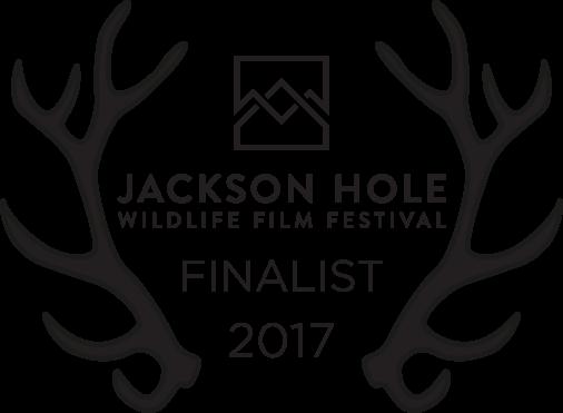 2017JHWFF_Laurels_Finalist_Black.png