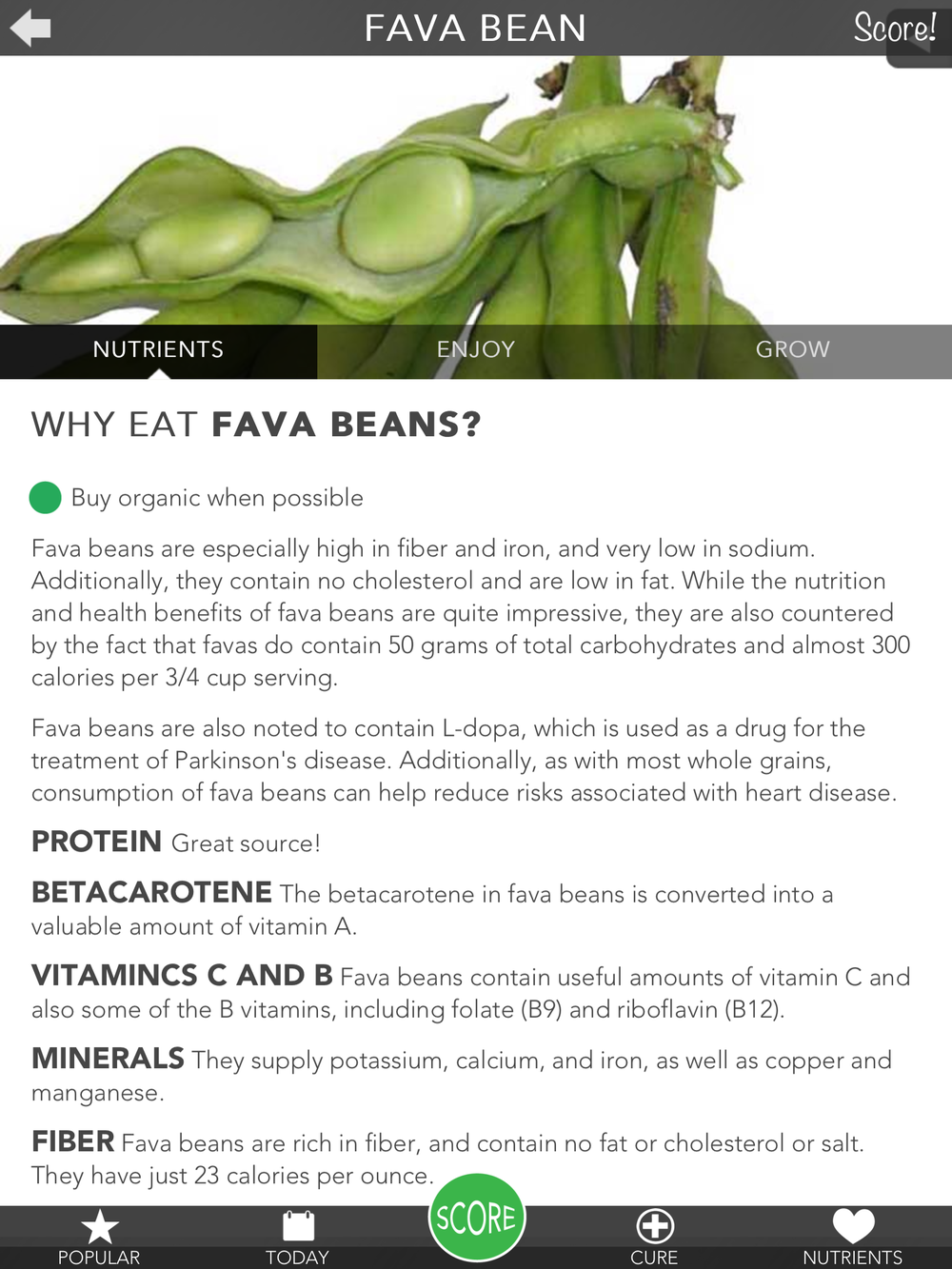 Fava Beans.PNG