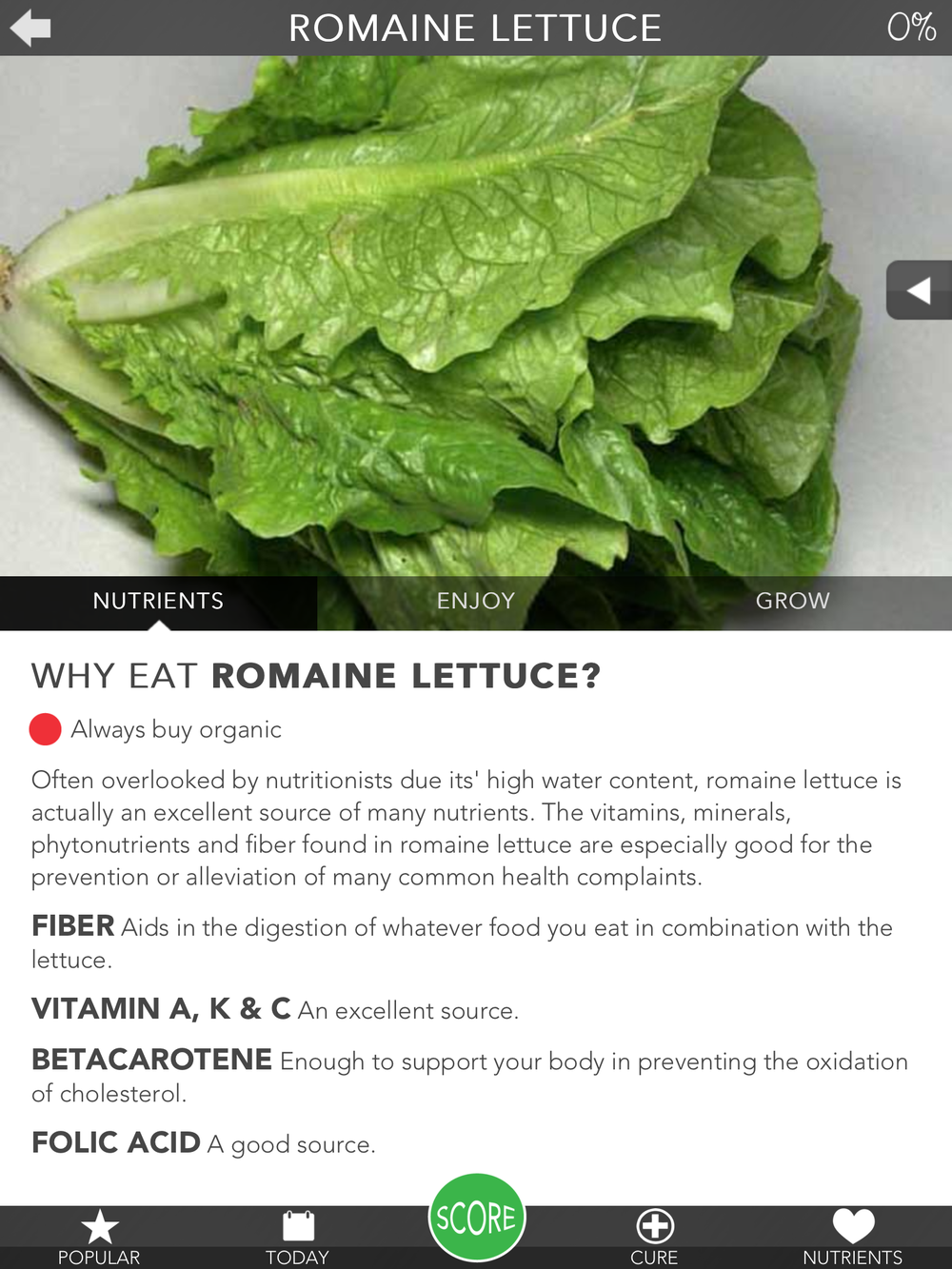 Romaine Lettuce.PNG