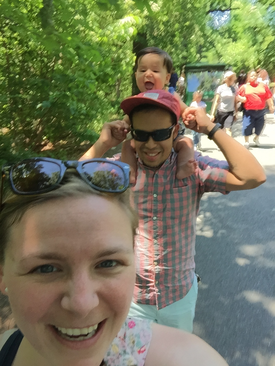Bronx Zoo!
