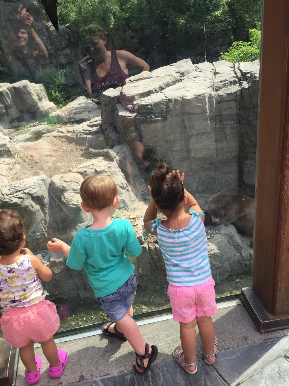CP Zoo!