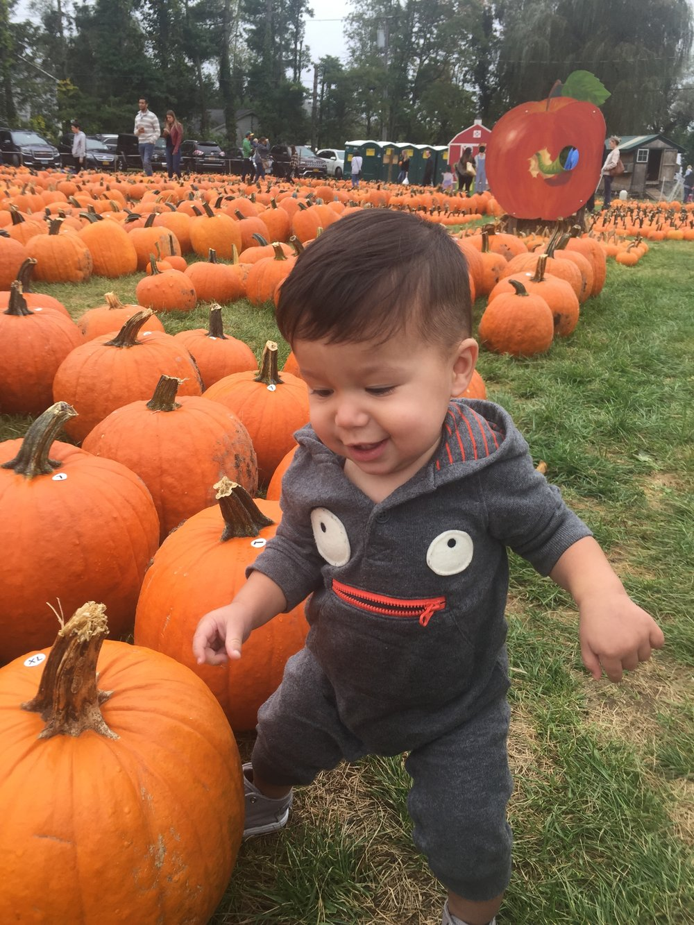 Pumpkin patch fun!