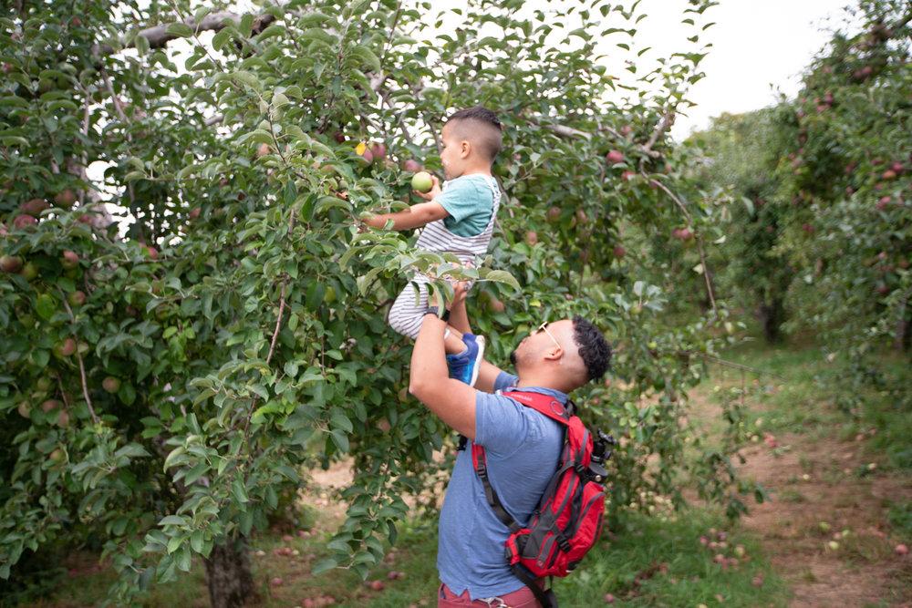 applepicking2018-51.JPG