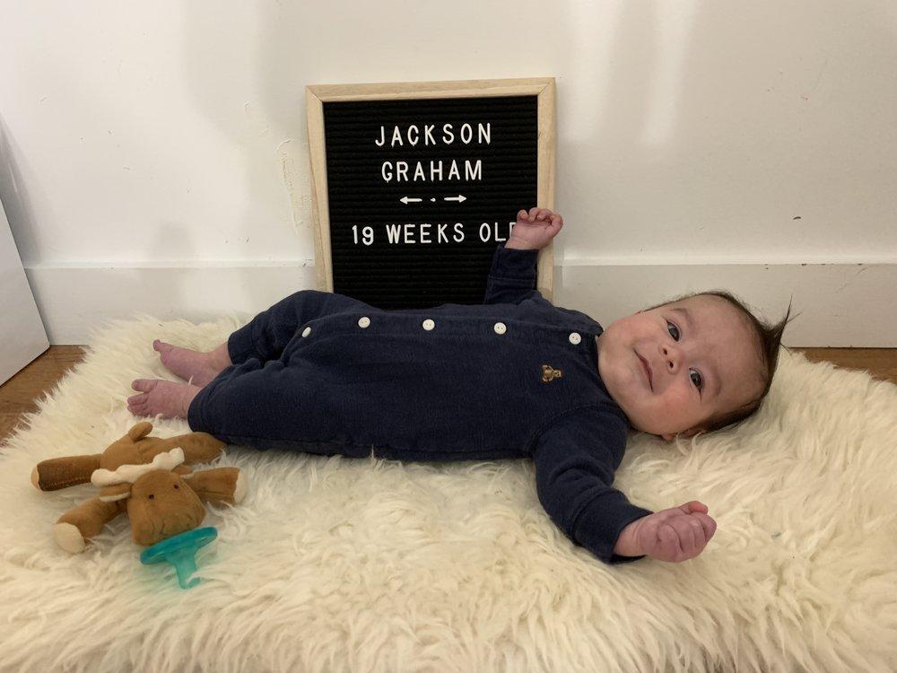 19 weeks old