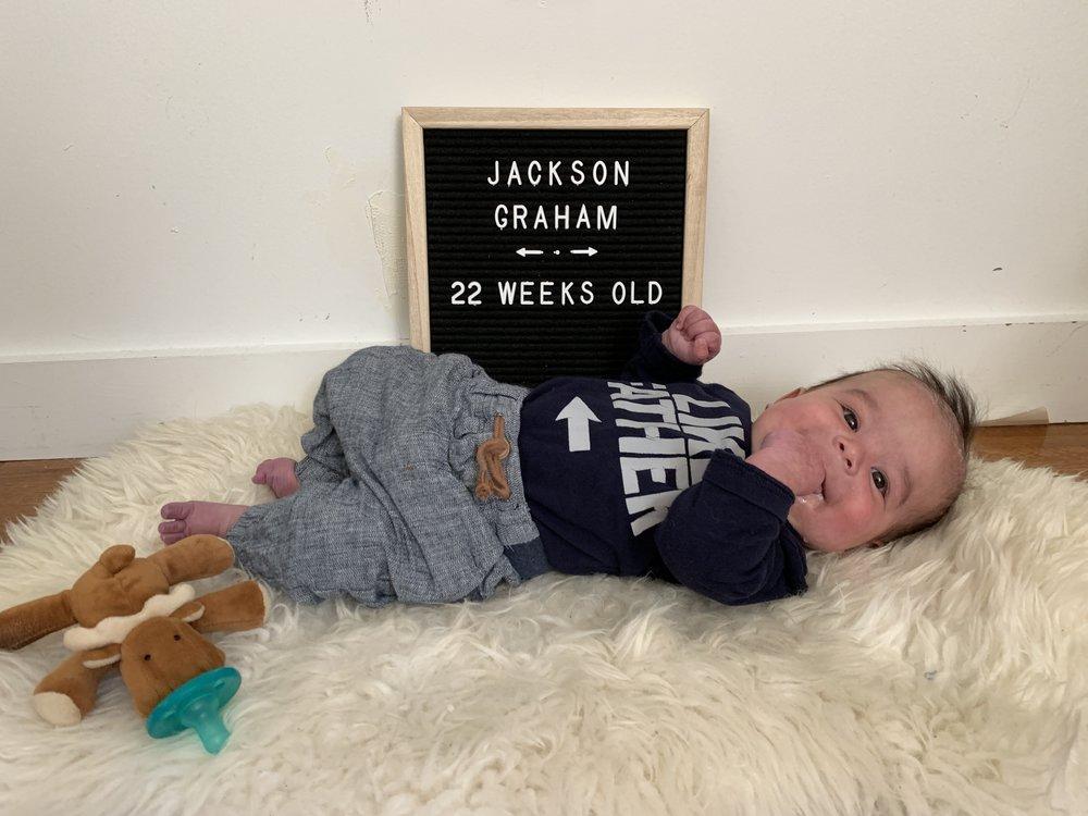 22 weeks old
