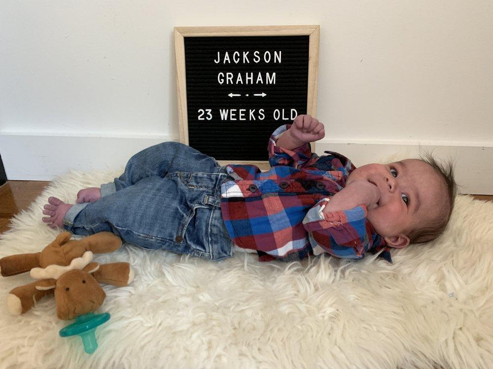 23 weeks old