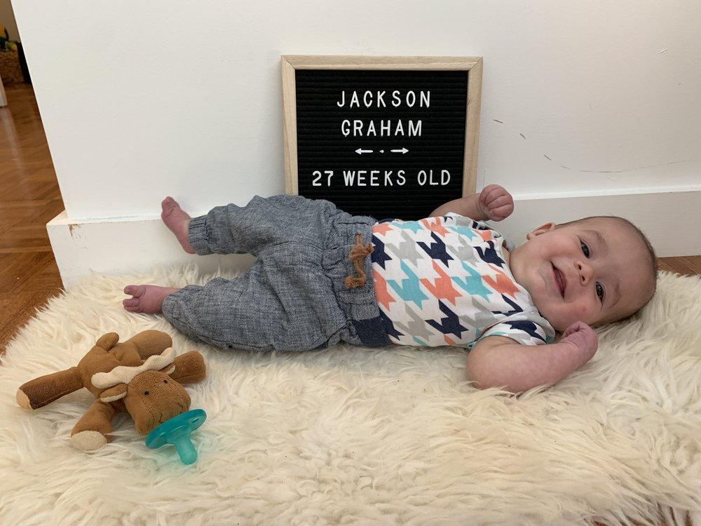 27 weeks old
