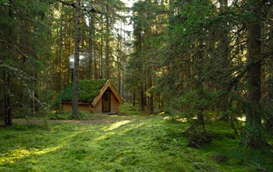 Top 10 Alternative Nordic Getaways Mr Wolf Magazine