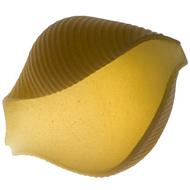 jumbo_shells.jpg
