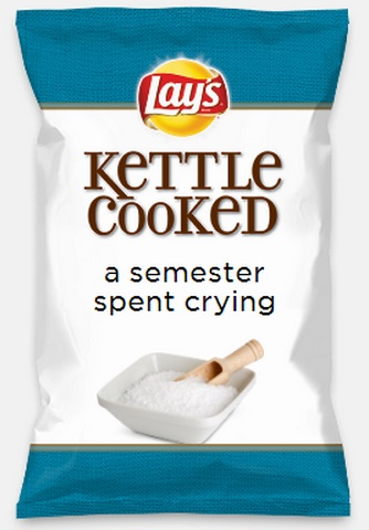 lays-do-us-a-flavor-parodies-26-a-semester-spent-crying.jpg
