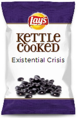 lays-do-us-a-flavor-parodies-29-existential-crisis.jpg