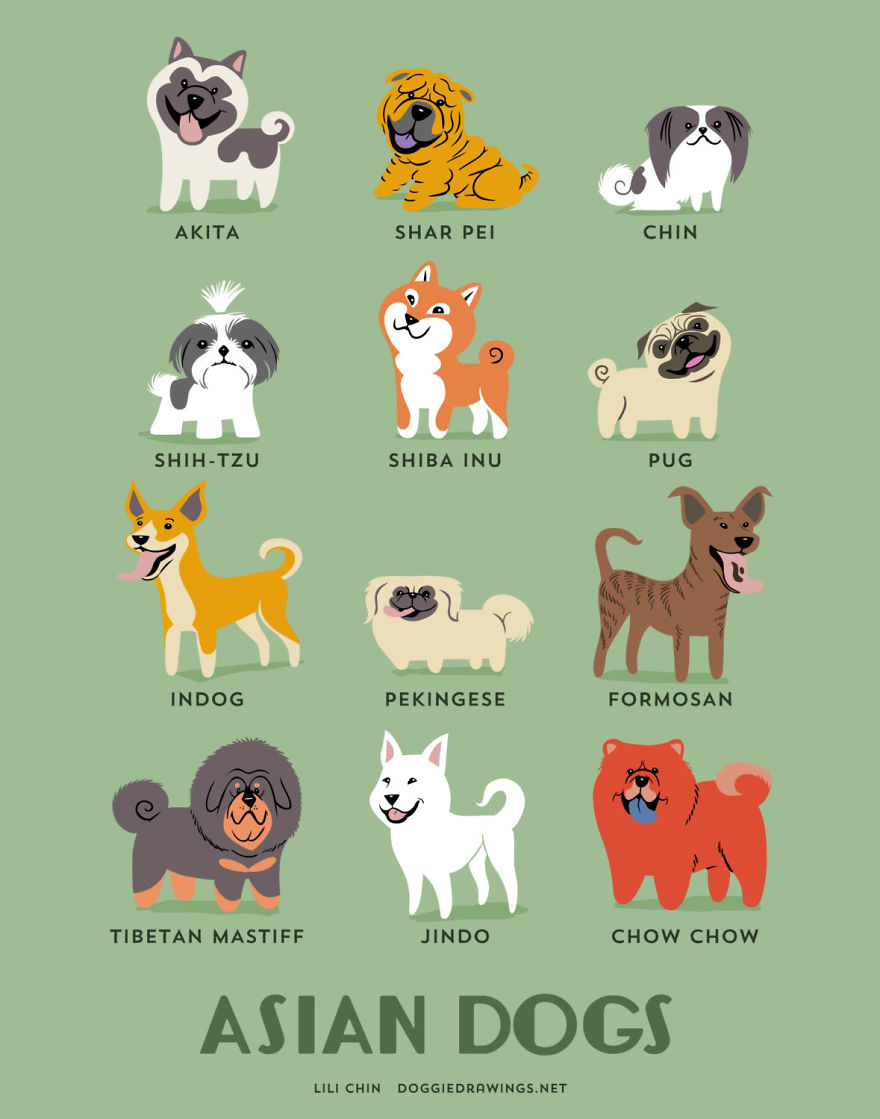 Dogs-Of-The-World-Cute-Poster-Series-Shows-The-Geographic-Origin-Of-Dog-Breeds1__880.jpg