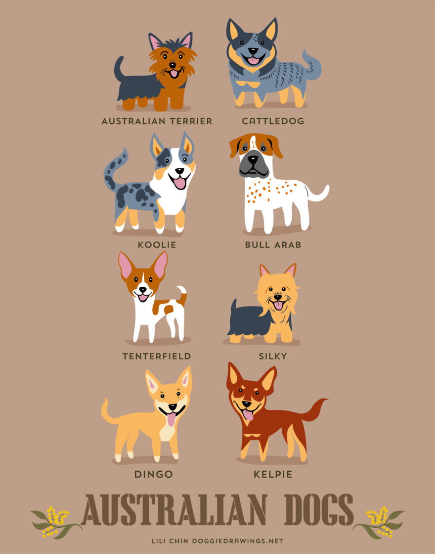Dogs-Of-The-World-Cute-Poster-Series-Shows-The-Geographic-Origin-Of-Dog-Breeds2__880.jpg