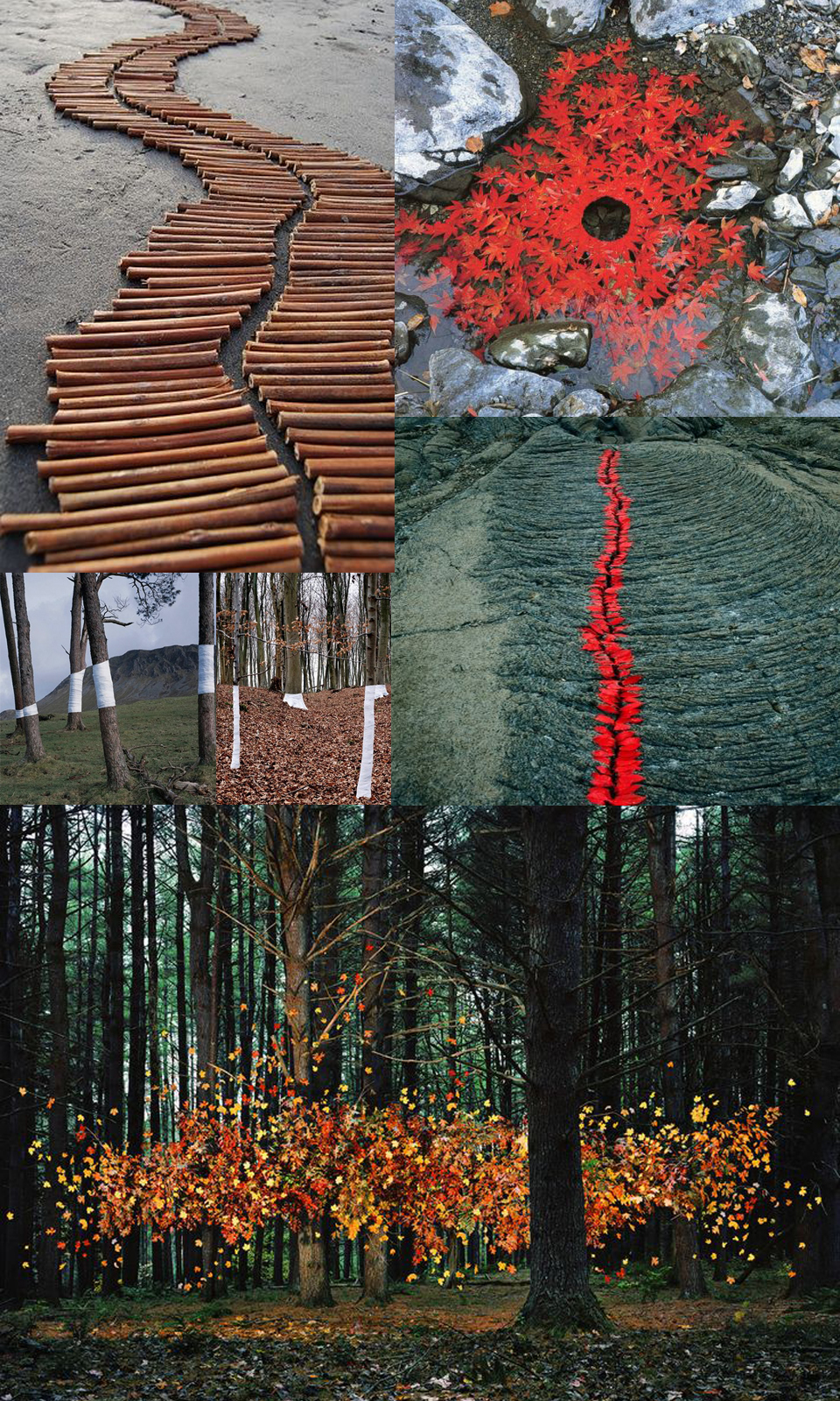 Andy Goldsworthy, Nils Udo, Zander Olsen, and Thomas Joackson