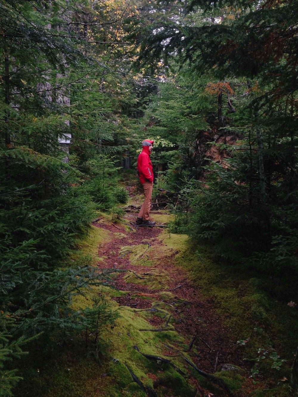 Maine-38.jpg