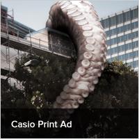 Casio Print Ad
