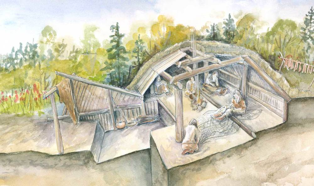 Cutaway of Pithouse