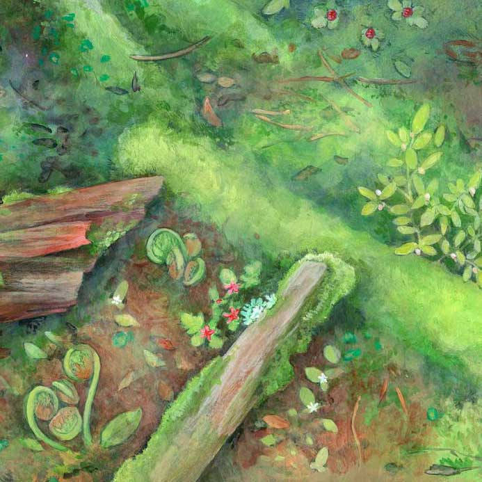 Forest_detail_2.jpg