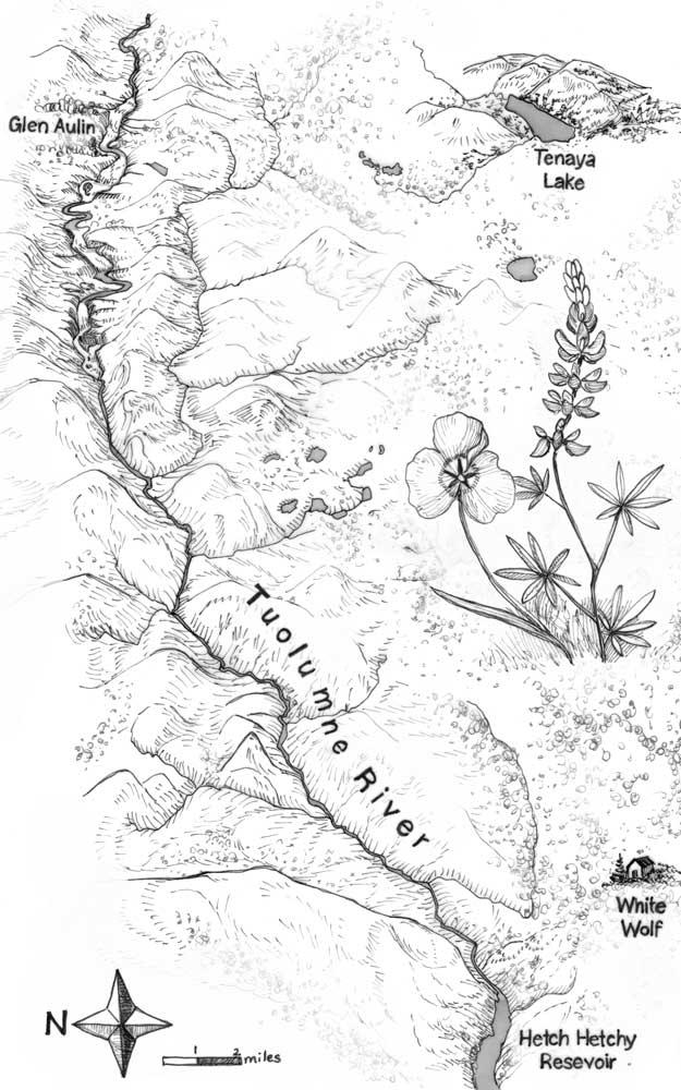 Fig_3_Yosemite.jpg