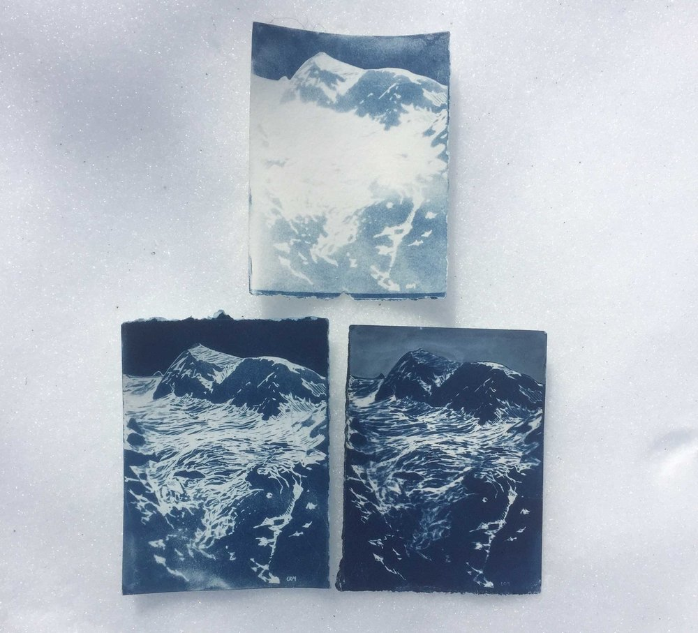 Working on cyanotype exposure