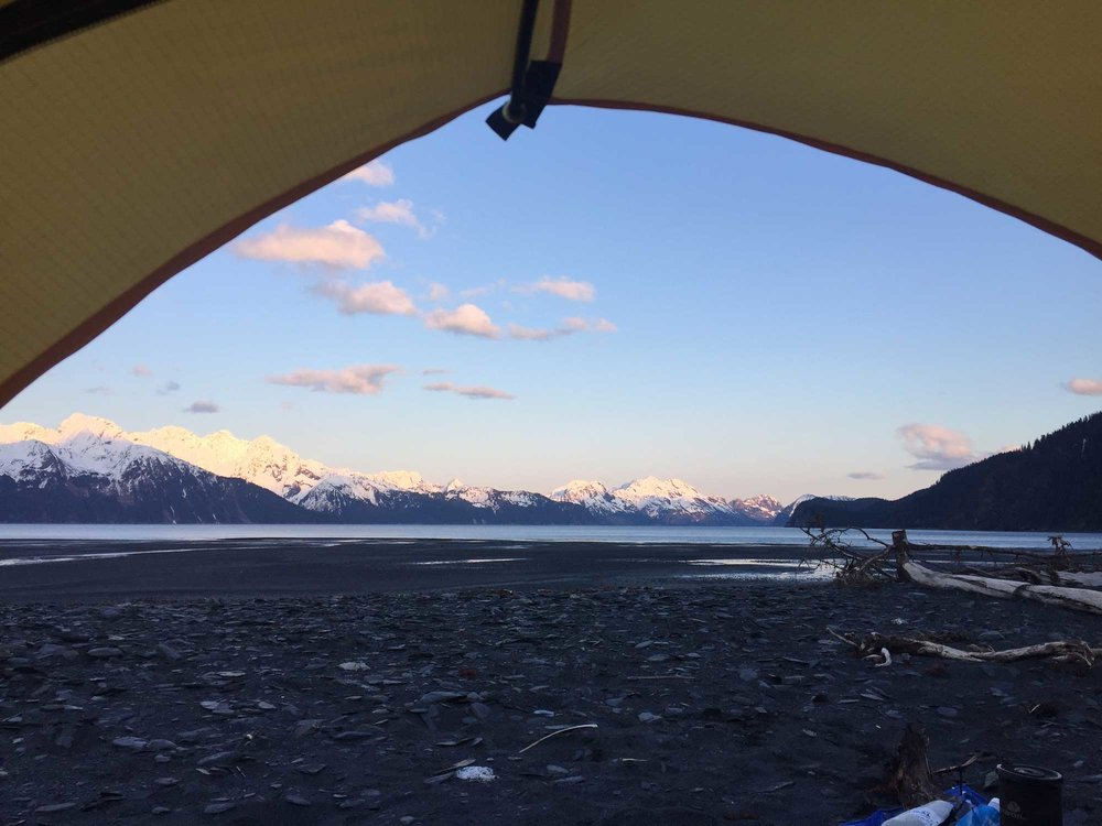 My last evening camping on Tonsina point. I woke up to whales and sunshine.