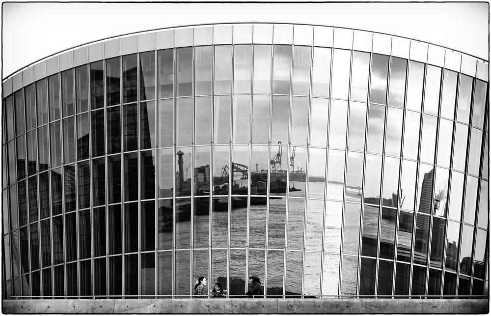 cranereflections.jpg
