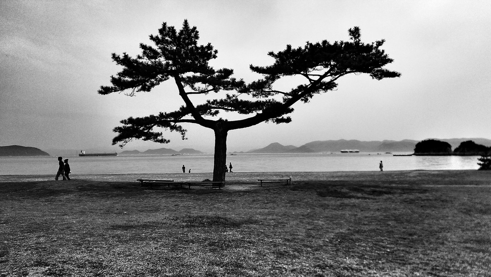 A stroll on Naoshima Island.