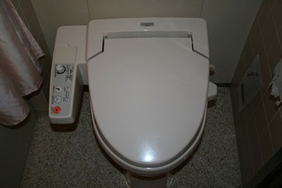The majestical high-tech Japanese toilet!
