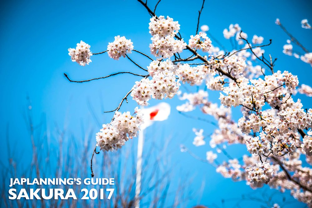 JAPLANNING SAKURA 2017 FORECAST