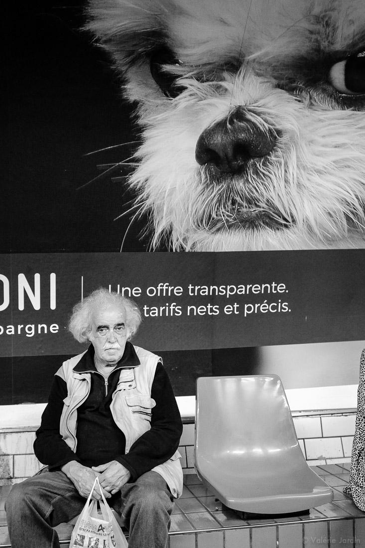 ©Valérie Jardin - Eye Contact-9.jpg