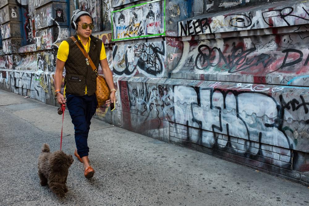©Valérie Jardin - street dogs-15.jpg