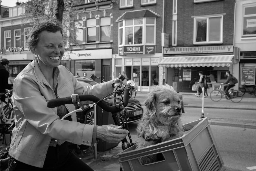 ©Valérie Jardin - street dogs-21.jpg