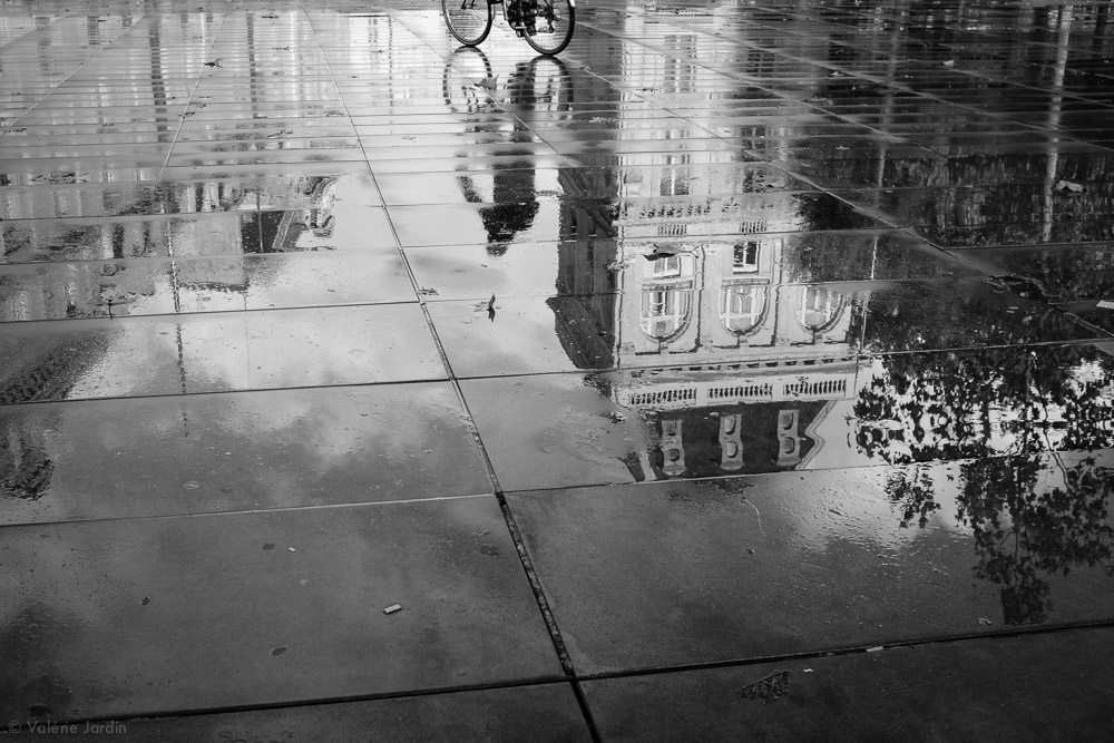 ©Valerie Jardin  ~ reflections-13.jpg