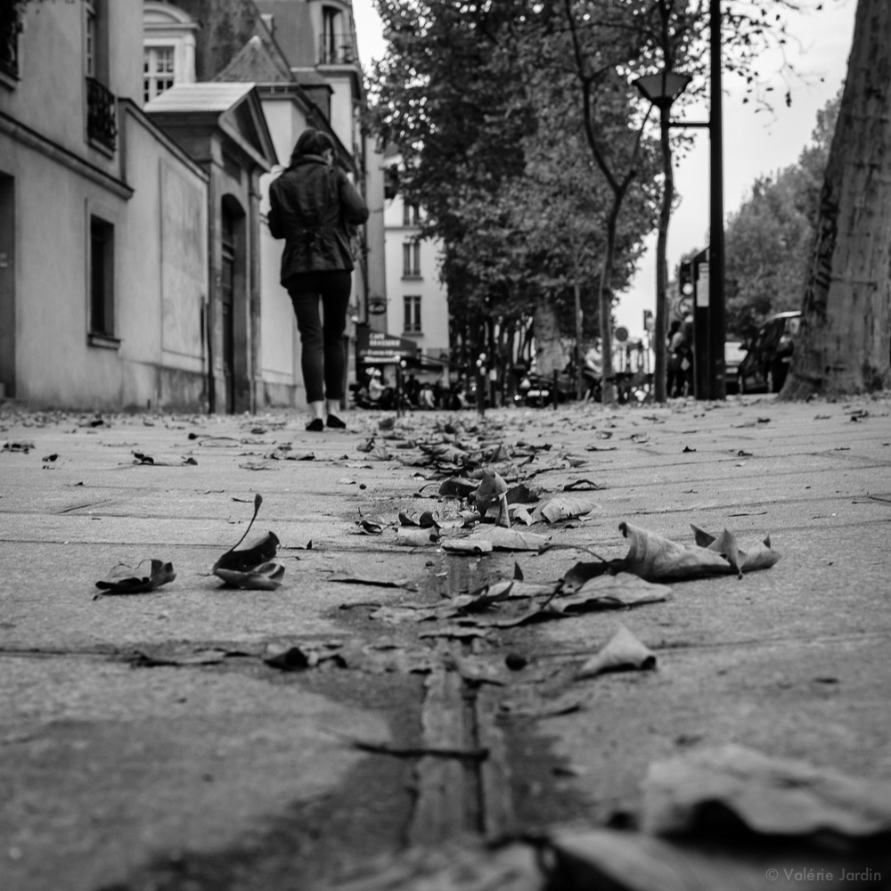 ©Valerie Jardin - Fall in the city-1.jpg