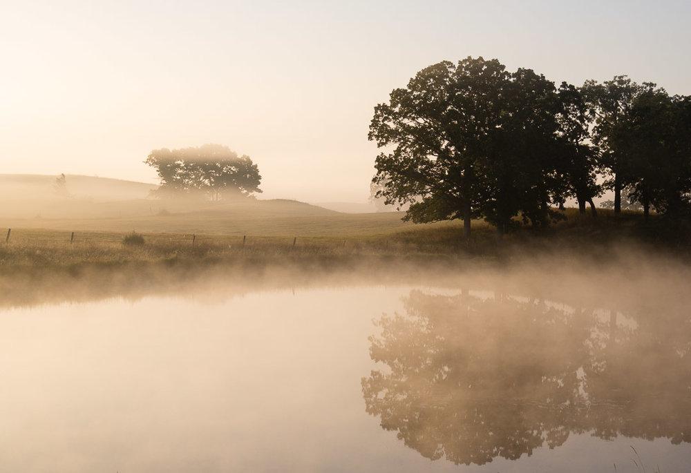 ©Valérie Jardin ~ Morning Fog in Minnesota