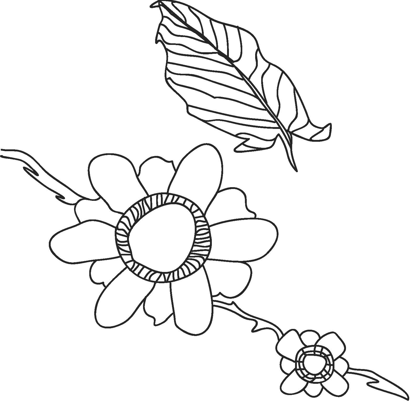 flowersmandy