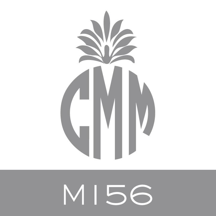 M156.jpg