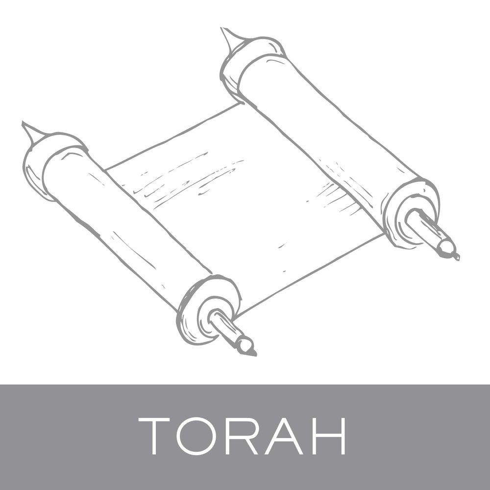 torah.jpg