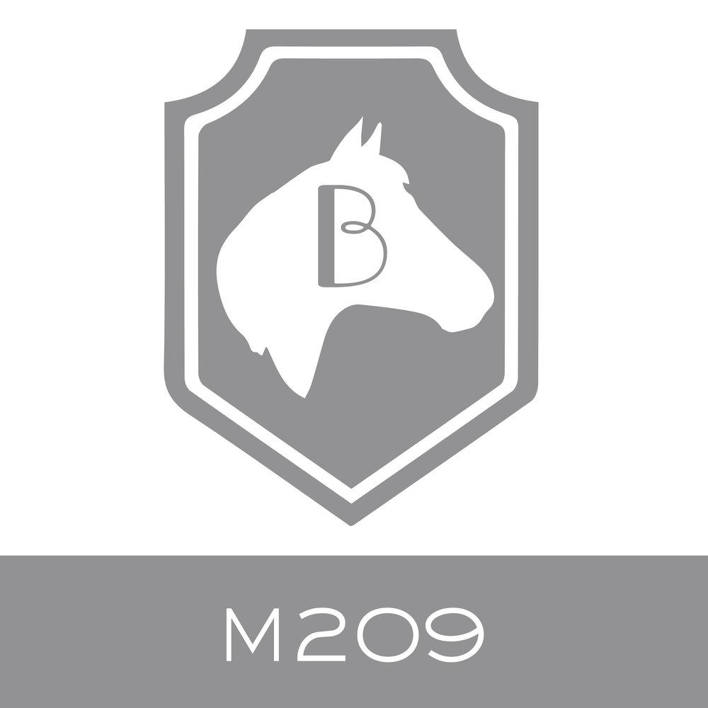 M209.jpg