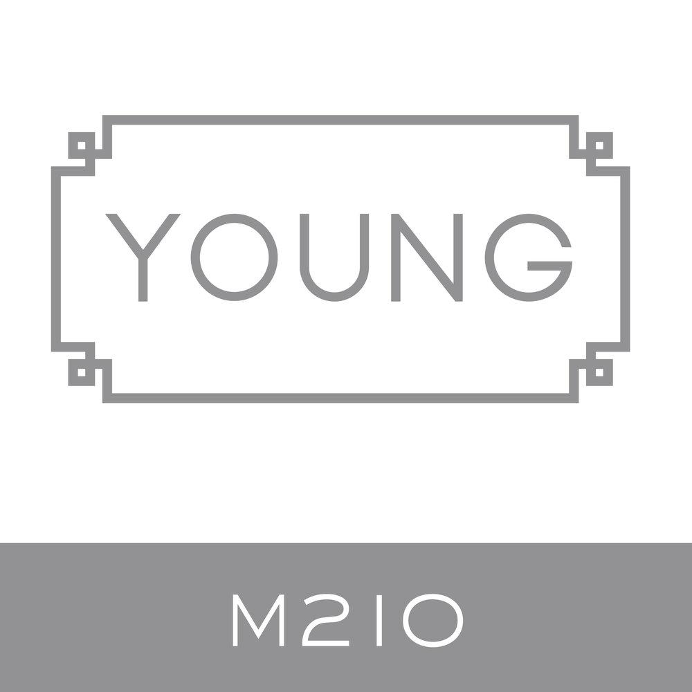 M210.jpg
