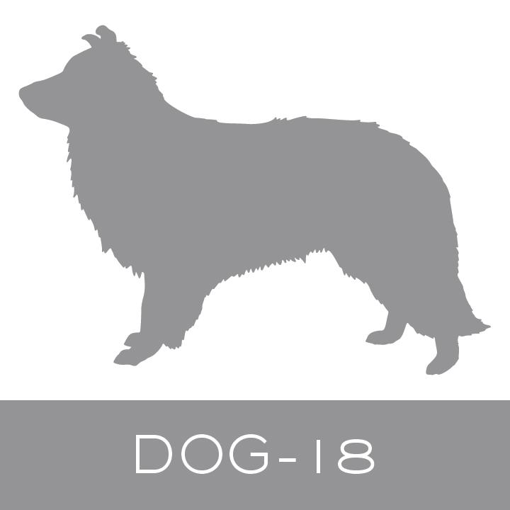 dog-18.jpg