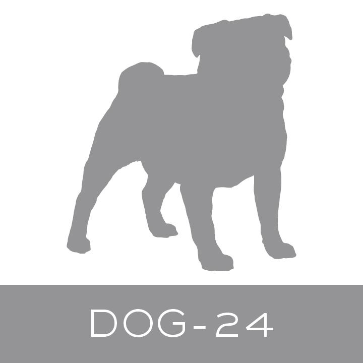 dog-24.jpg