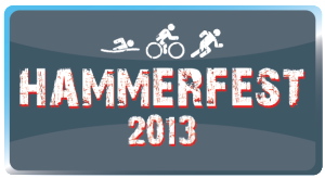 Hammerfest-Web-Button2-300x164.png