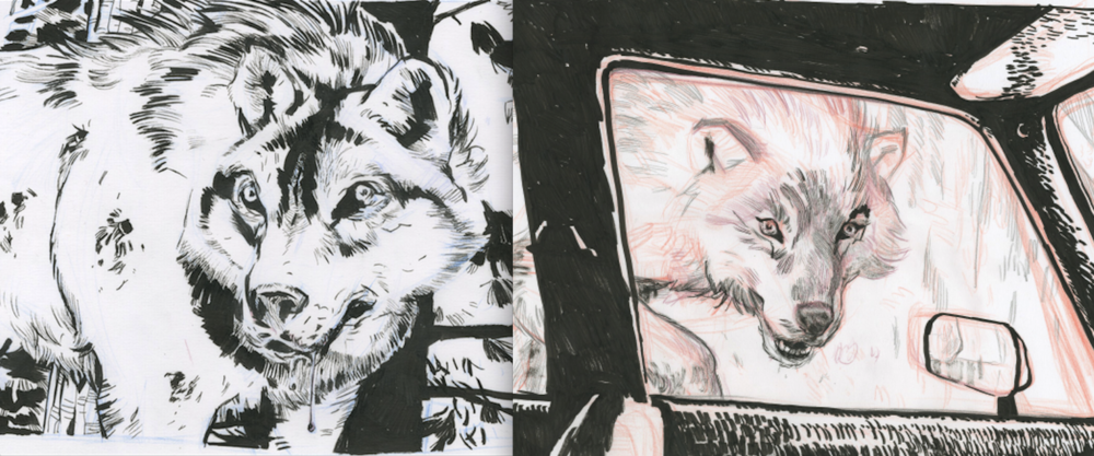 The first image shows the wolf riddled with bullet holes. The second image describes the first sighting of the beast from the interior of a car. In the end the second idea was chosen to better show the scale of the animal.