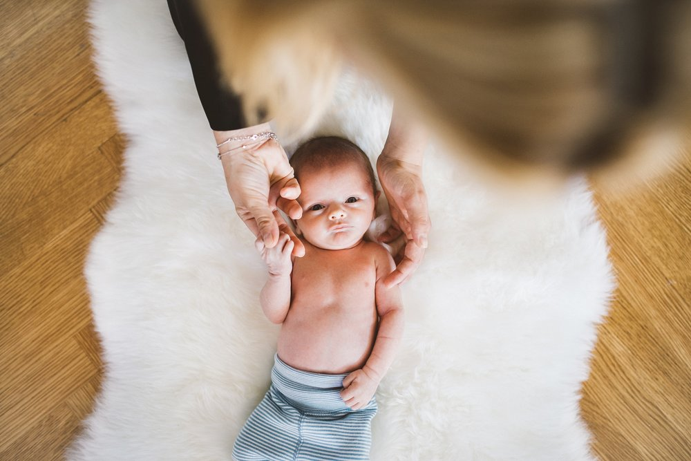 manhattan newborn photographer_0157.jpg