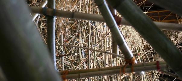 04.07.06_bambu.jpg