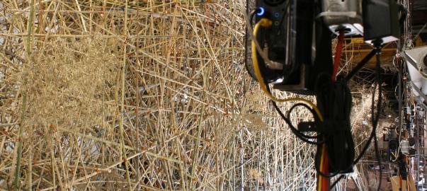 04.07.05_bambu.jpg