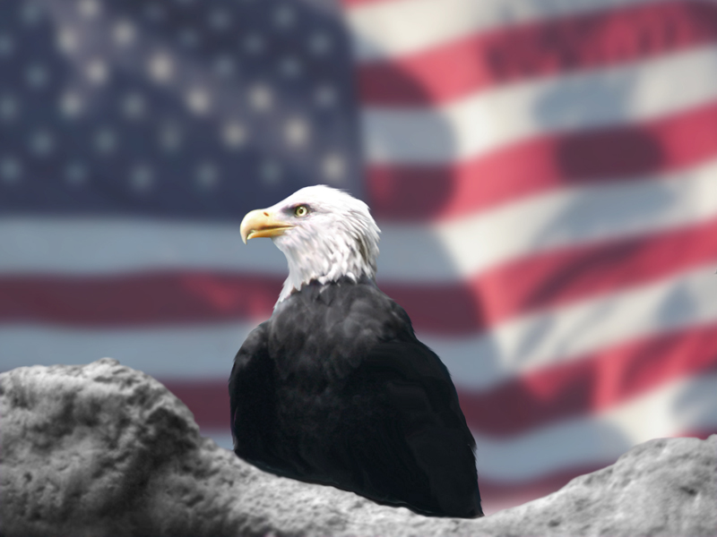 eagle and flag.jpg