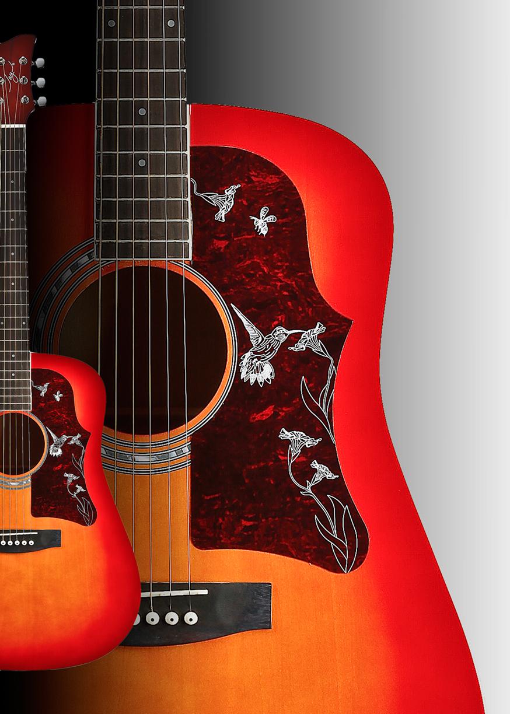 Guitar-Detial-LR-X.jpg